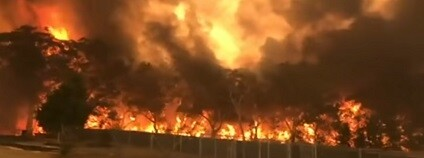 foto: ABC News (Australia) / youtube.com