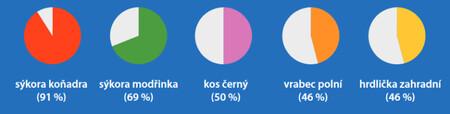 Druhým údajem, který byl sledován, byl plošný výskyt, tedy kolik procent účastníků daný druh zaznamenalo bez ohledu na velikost hejna. Například kosa zaznamenala polovina sčitatelů.