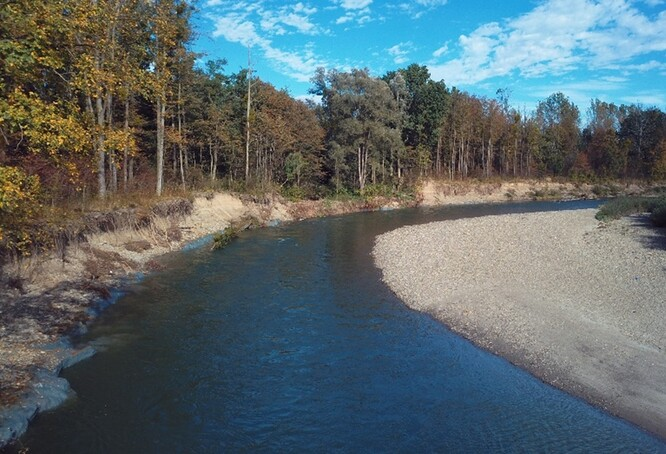 Otrávená část řeky Bečvy patří mezi přírodovědně hodnotné lokality. Na úseku se vyskytoval např. kriticky ohrožený hrouzek Kesslerův, který je na našem území potvrzen pouze z postiženého úseku řeky Bečvy.