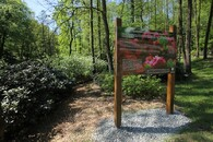 Rododendron park