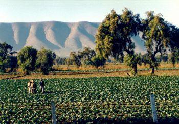 Farmáři ve státě Puebla, Mexiko