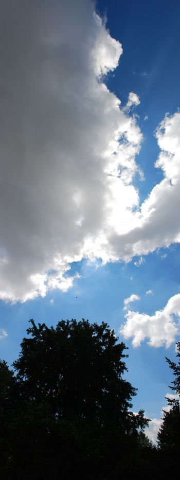 Modr� obloha