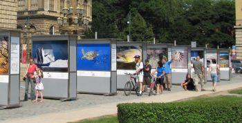 Výstava Wild Wonders of Europe