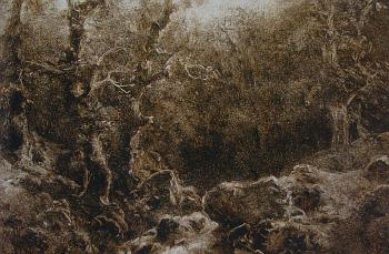August Bedřich Piepenhagen: Lesní krajina (50.-60. léta 19. století, asfalt na papíru)