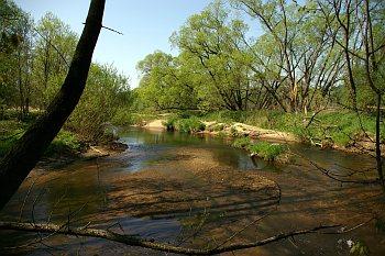 Meandry řeky Smědé