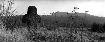 Smírčí kříž s vrchem Vladař v pozadí