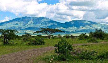 Hory v Serengeti