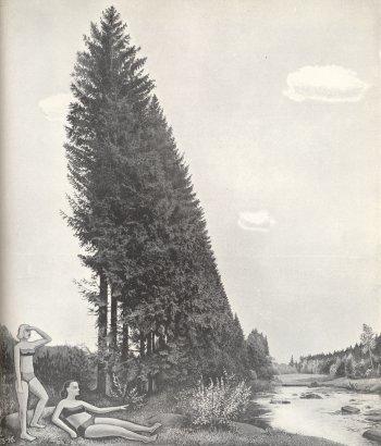 Přebal knihy Ladislava Žáka Byt a krajina